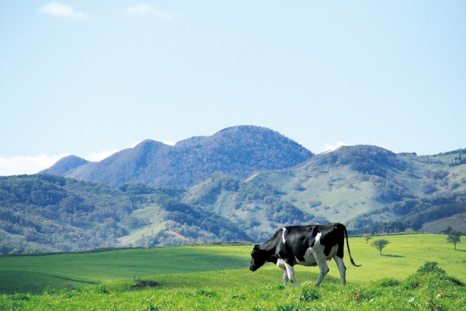 Naitai Highland Ranch Hokkaido Japón