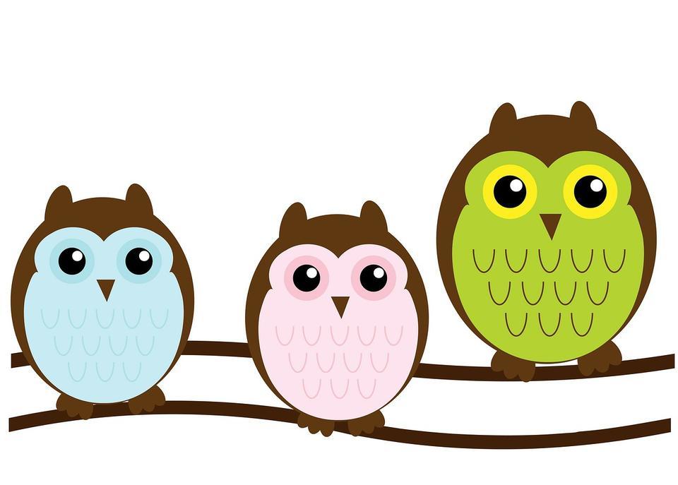 猫头鹰家庭可爱绿色朋克蓝色布朗