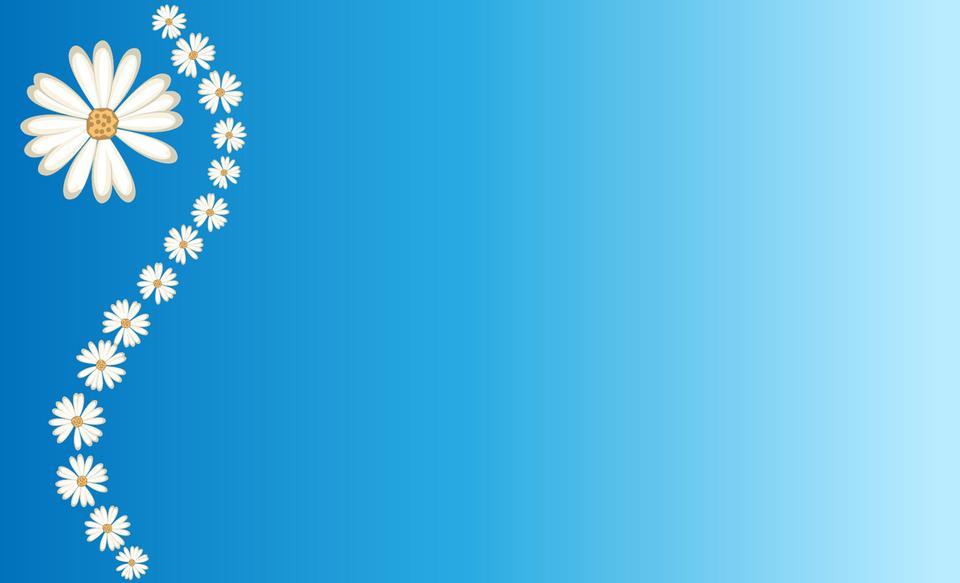 雛菊在藍色背景