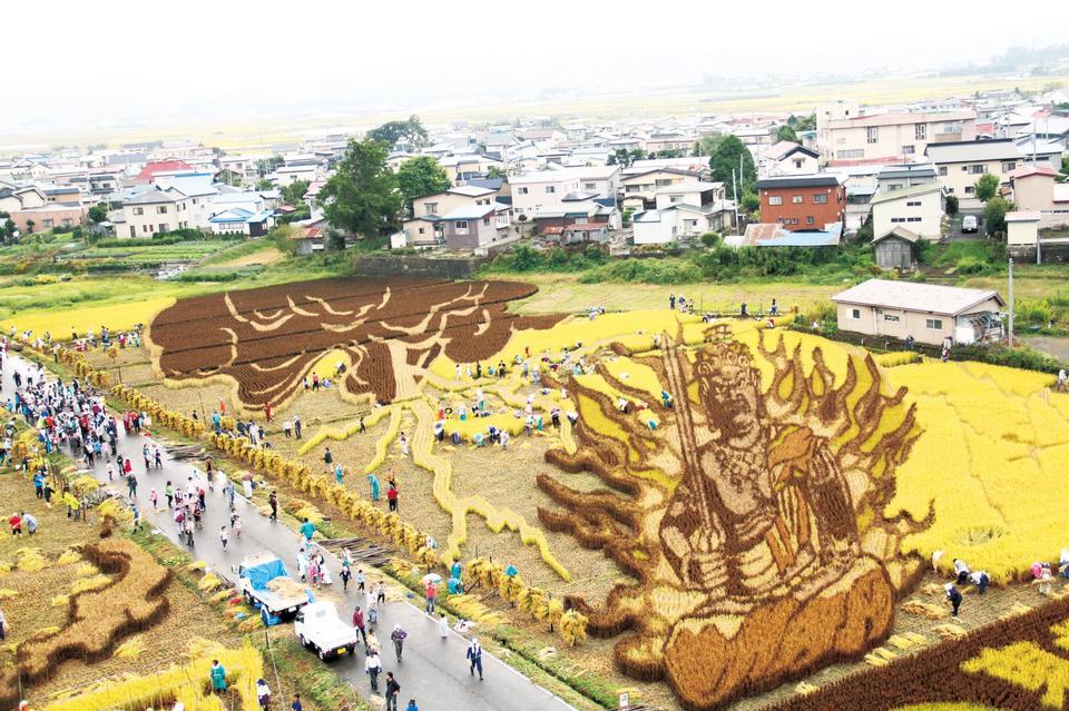 Japonesa increíble arte de arroz