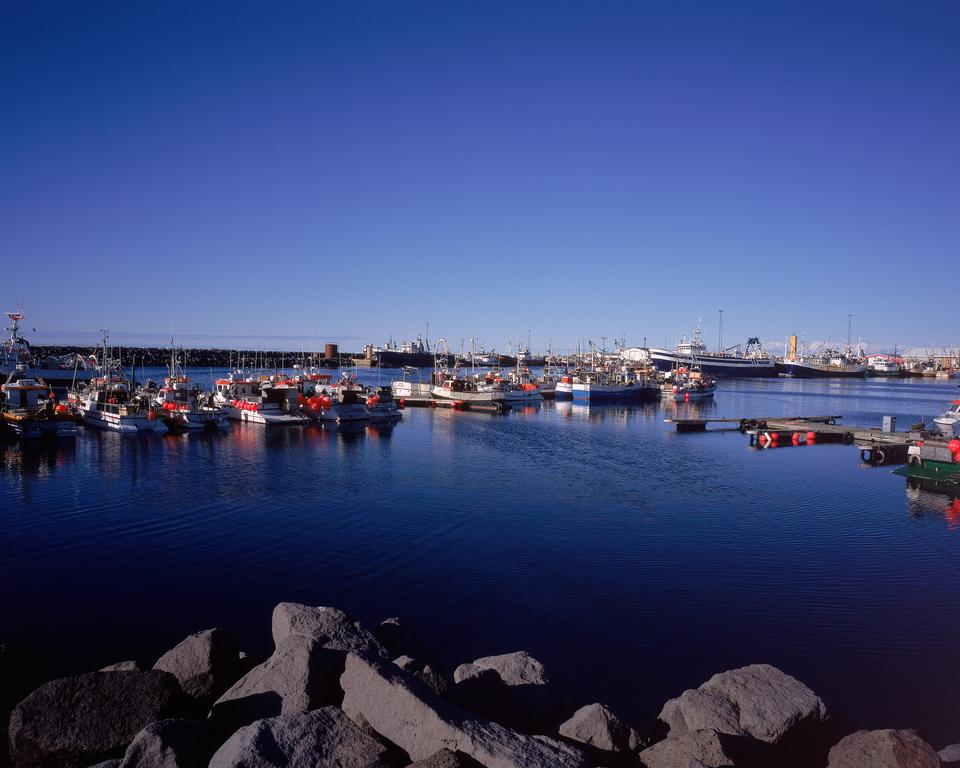 낚시 아이슬란드어 항구 보트