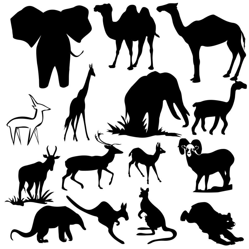 Animals Group