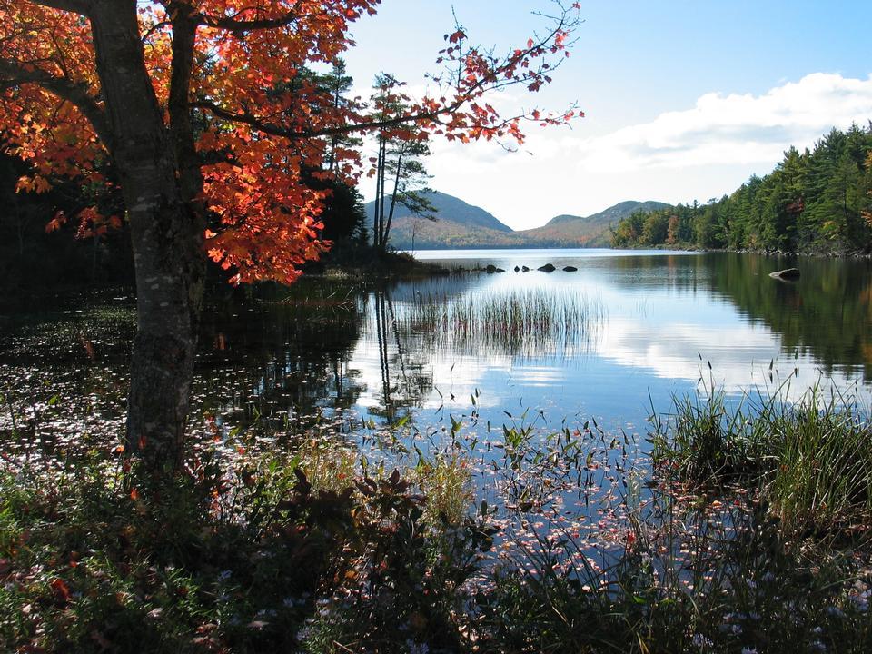 Colori autunnali Eagle Lake National Park Acadia