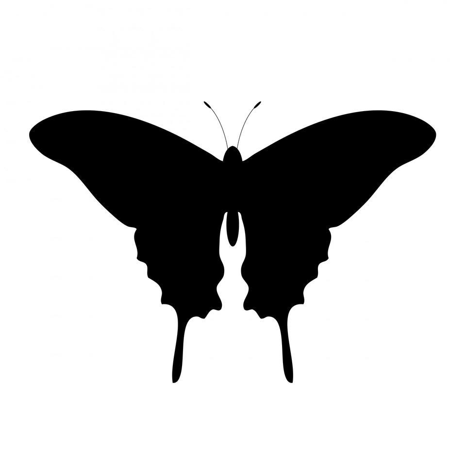 Papillon Silhouette Clipart