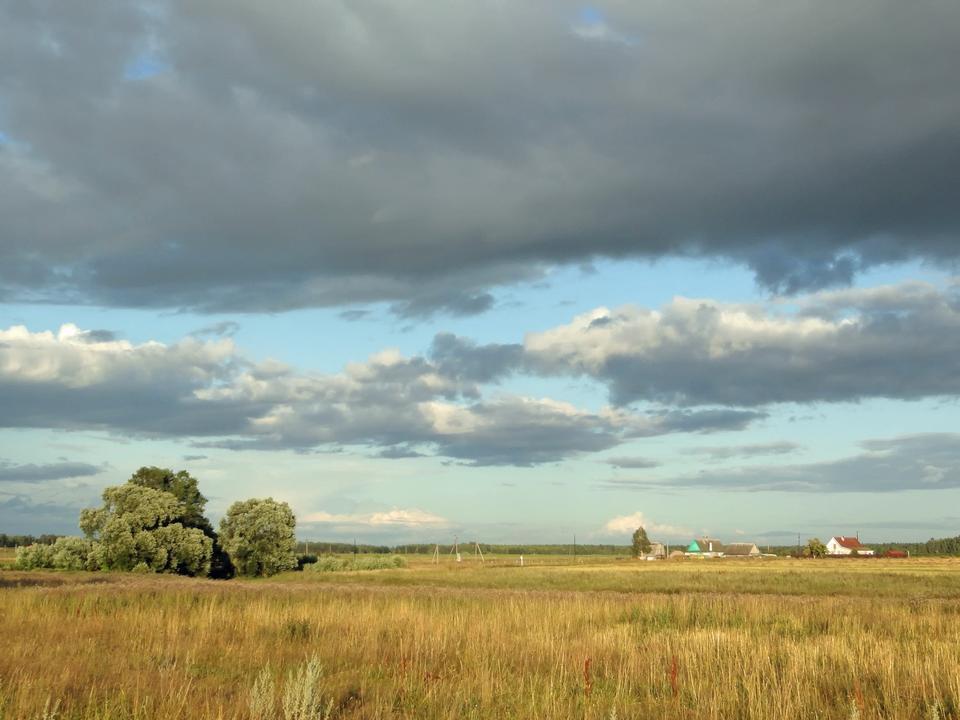 Russia Landscape Scenic Fields