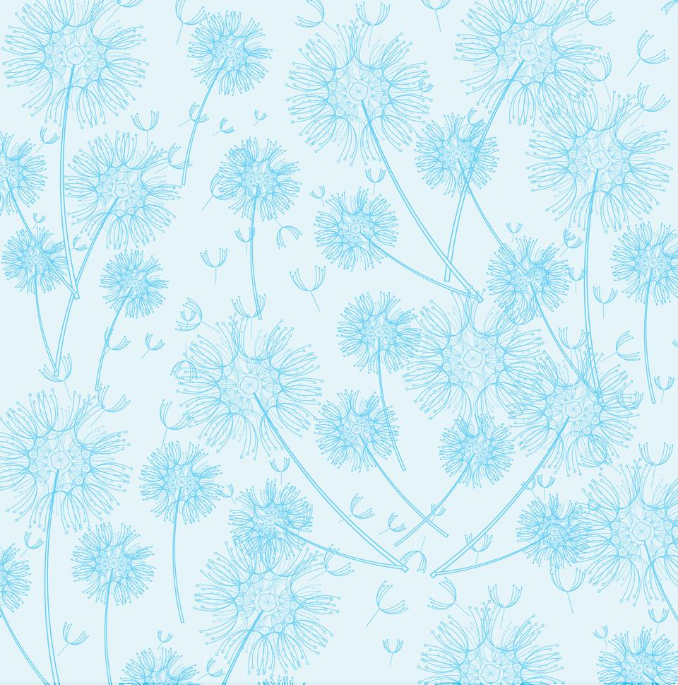 蓝色蒲公英墙纸背景为剪贴簿