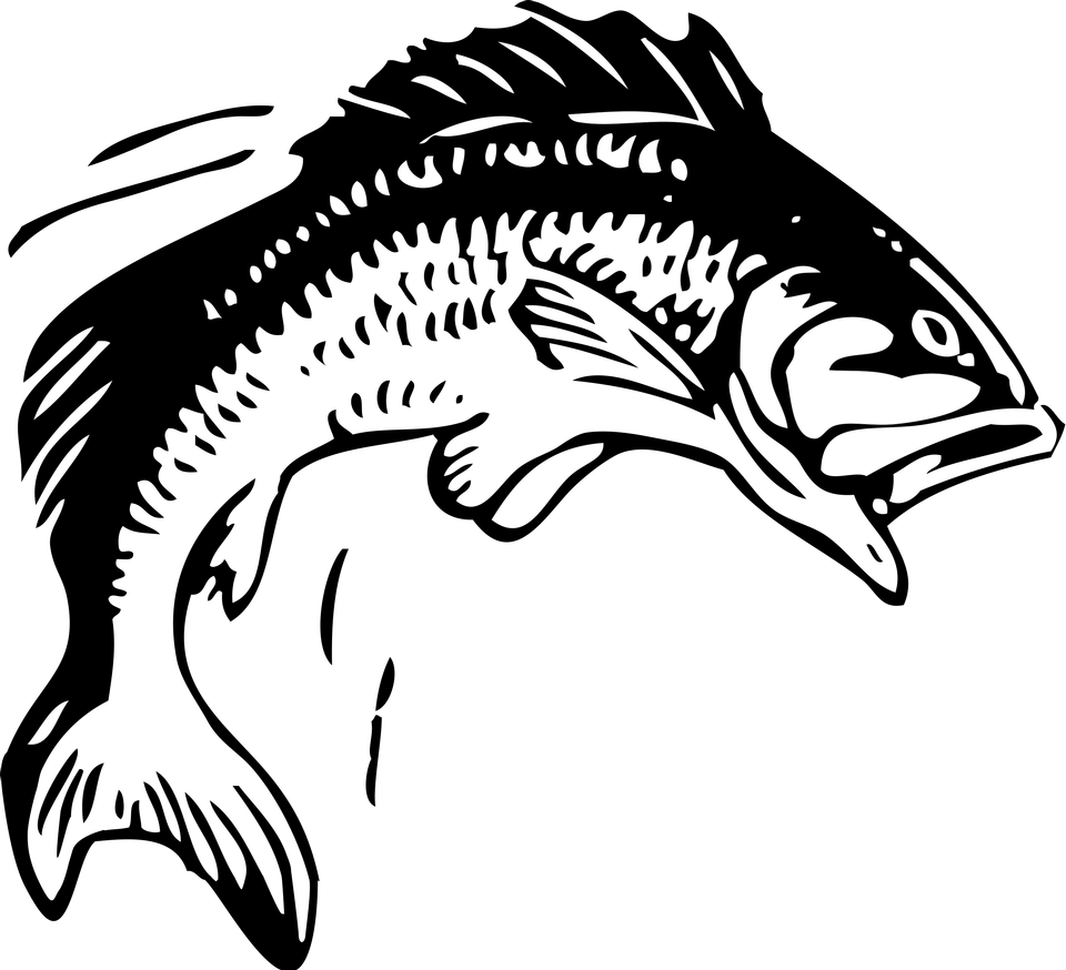 Illustration Of A Jumping Fish