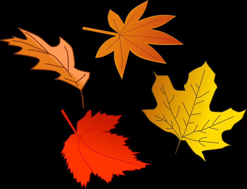 Illustration von bunten Herbstlaub