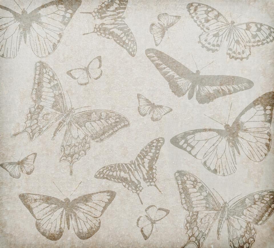 蝴蝶背景復古
