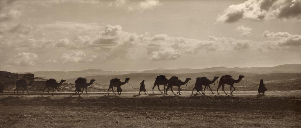 Egyptian camel transport passing over Olivet