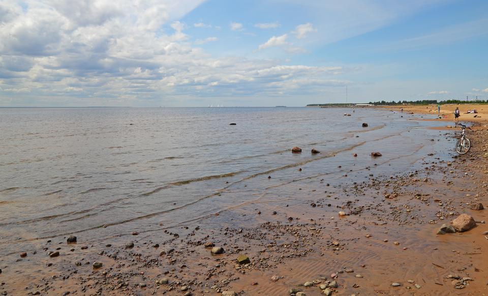 涅瓦湾在俄罗斯圣彼得堡