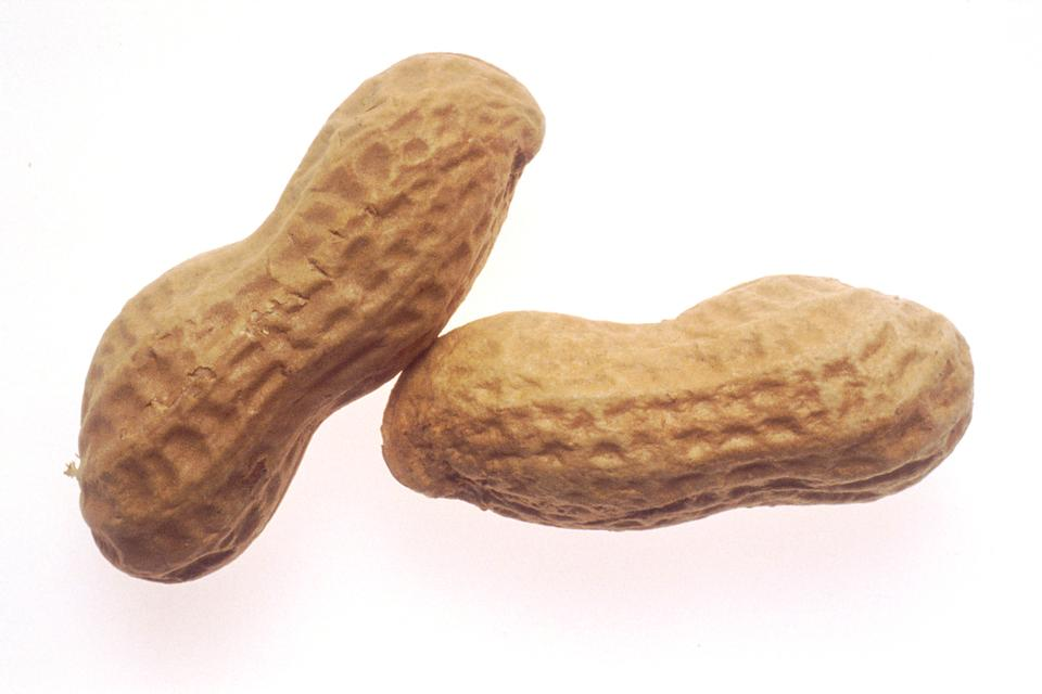 Two Peanuts Isolated On A White Background