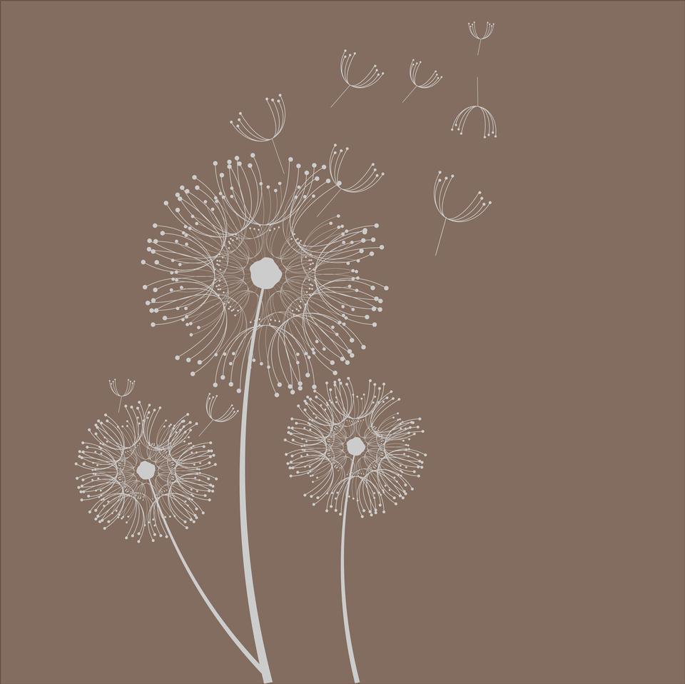 Dandelion Flowers Card