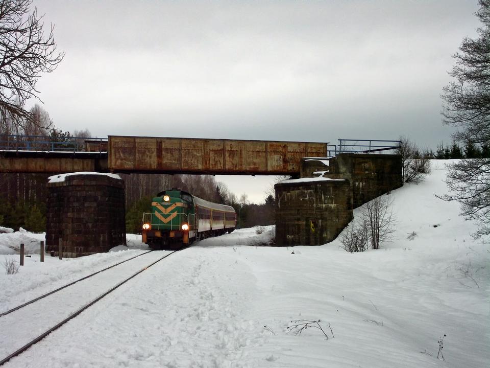 Ein Zug auf Schnee bedeckt Spuren