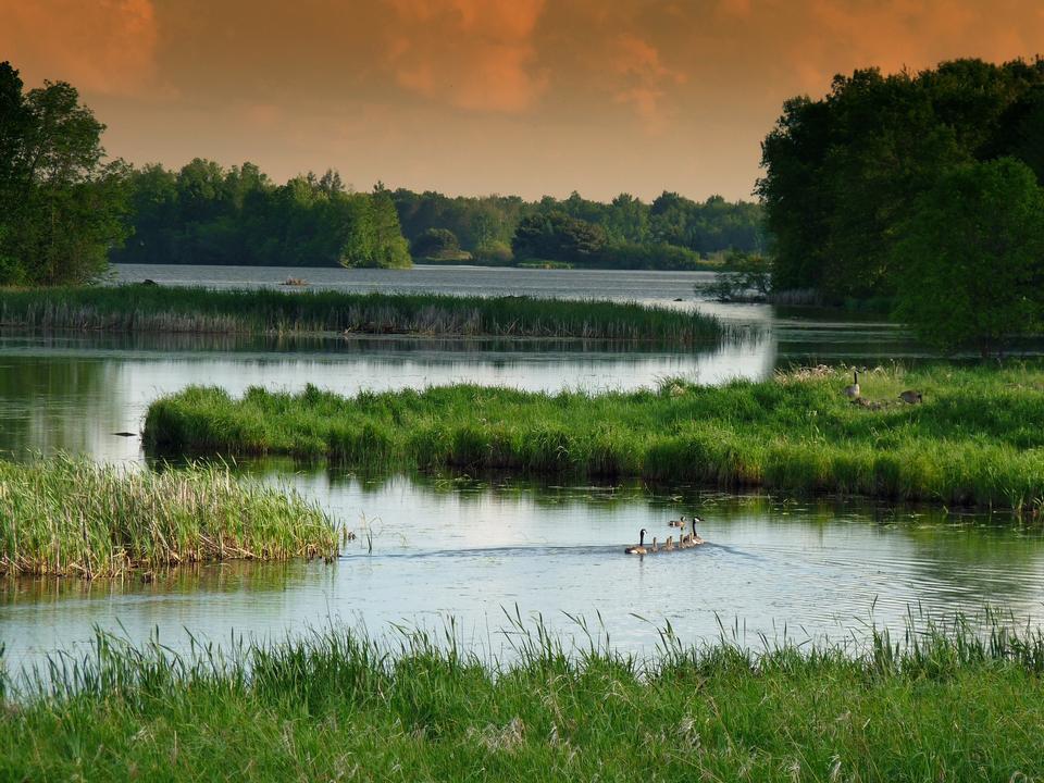 Calma Lake Lezíria Wisconsin Landscape