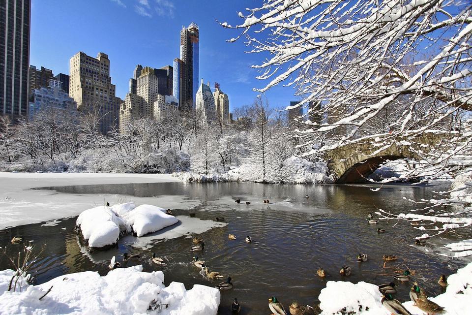 在纽约中央公园暴风雪后的一天