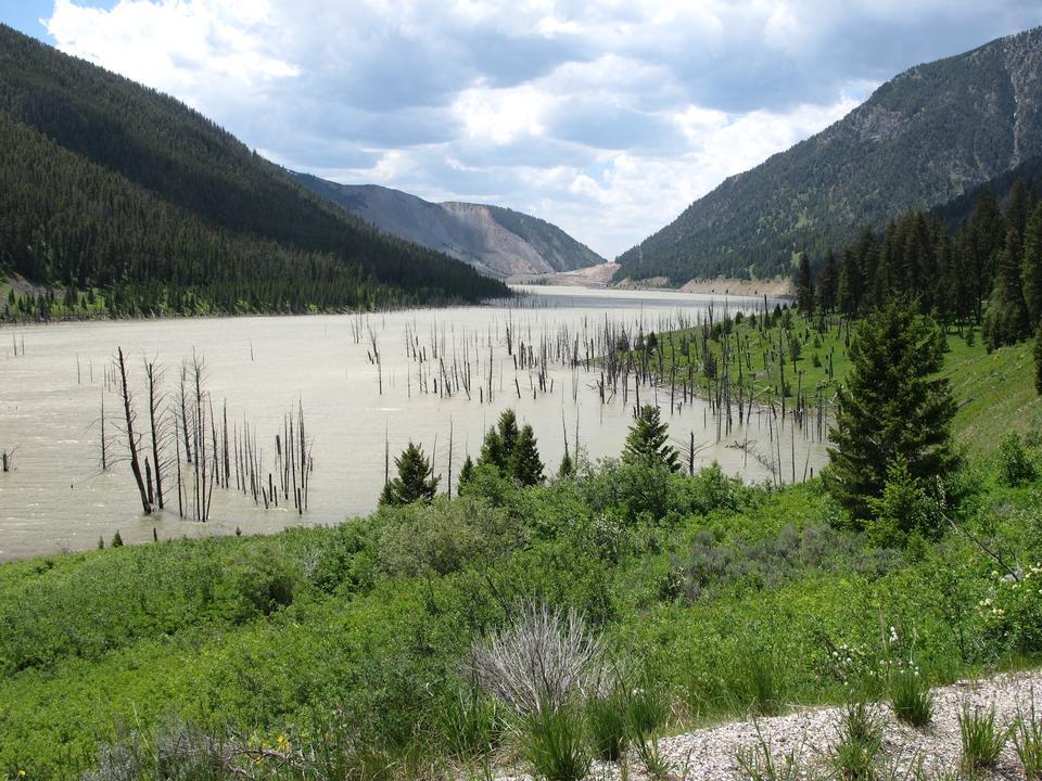 Quake Lake Madison River Valley Montana