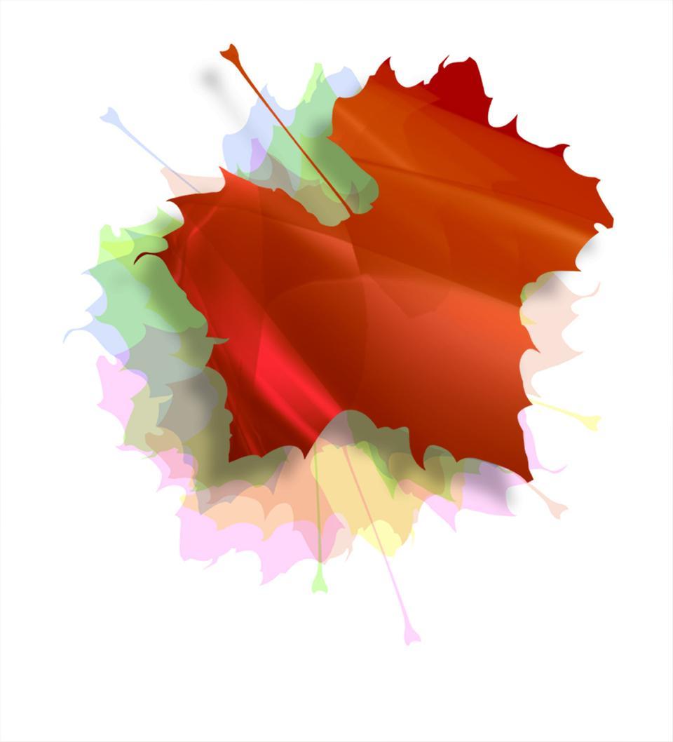 Isolated Autumn Leaves illustration