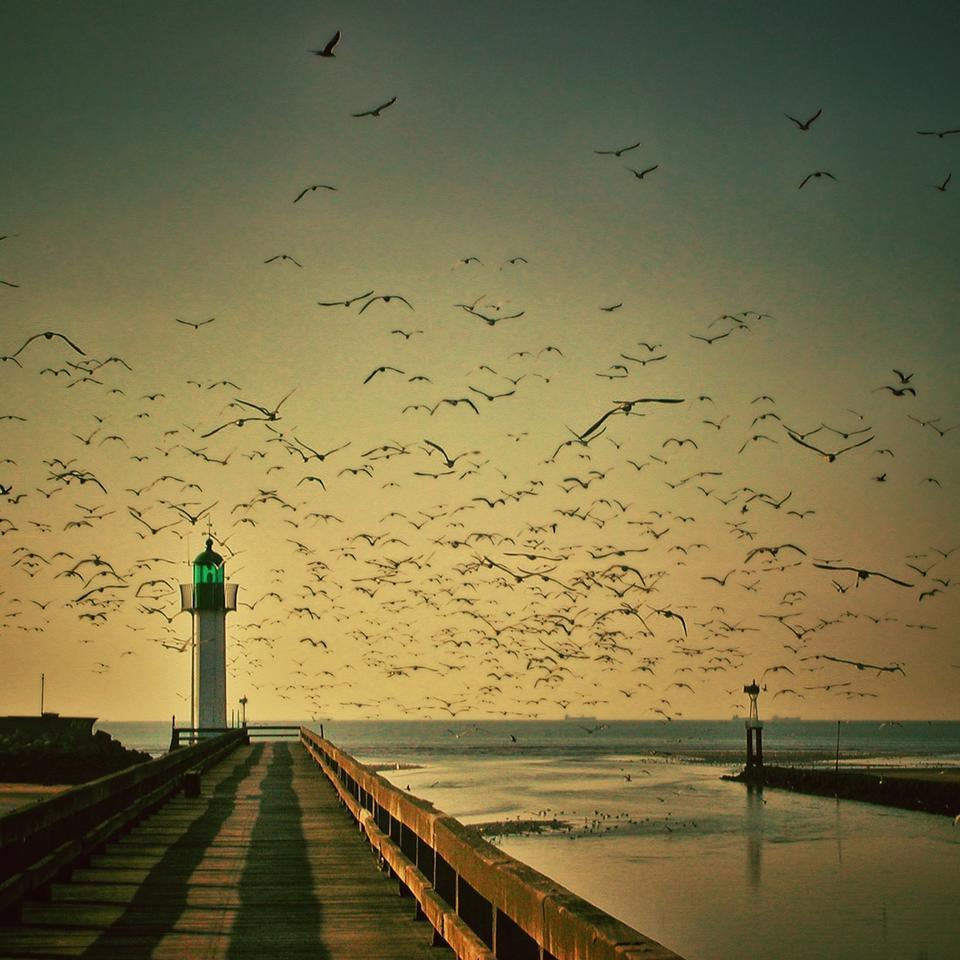 日落在盛大避风港灯塔