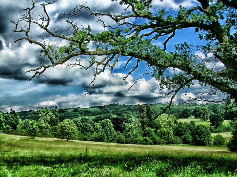 景觀英格蘭肯特郡