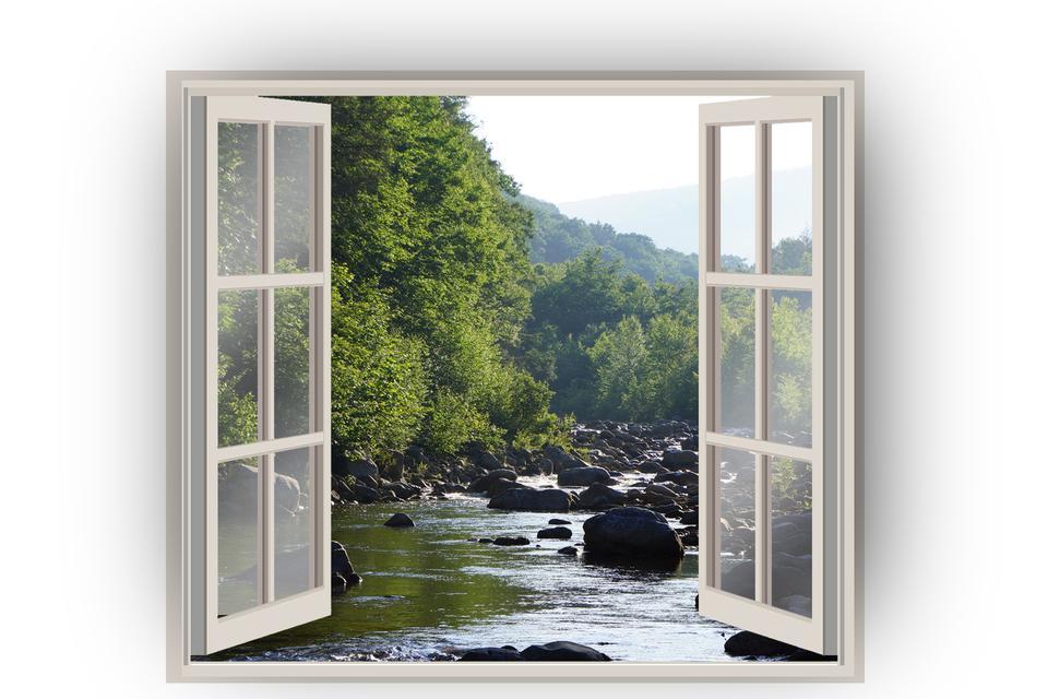 Ouvrir la fenêtre de forêt sur un fond