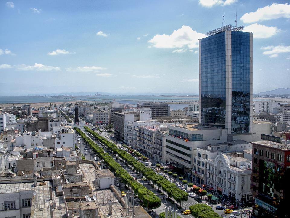 市容突尼斯突尼斯