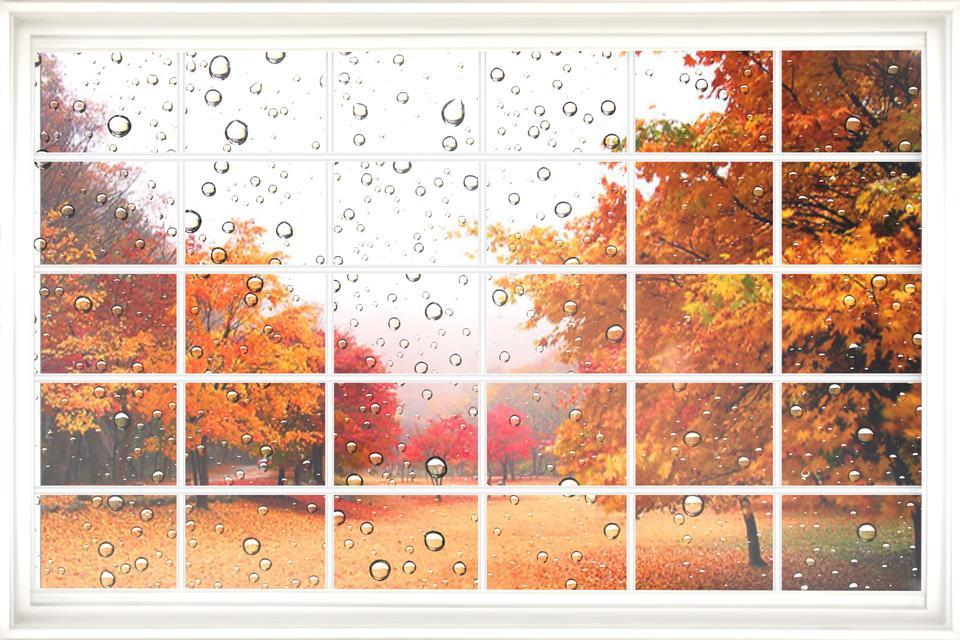 Fall views through grungy window frames.