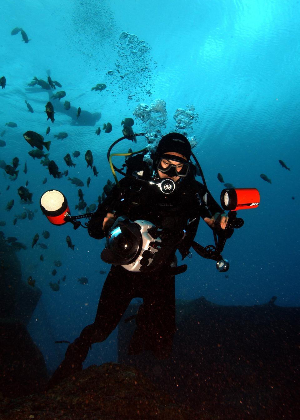 Los buzos explorar un arrecife de coral