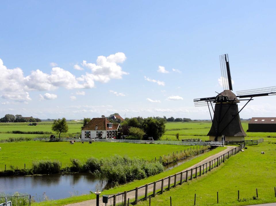 Moulins à vent hollandais traditionnels