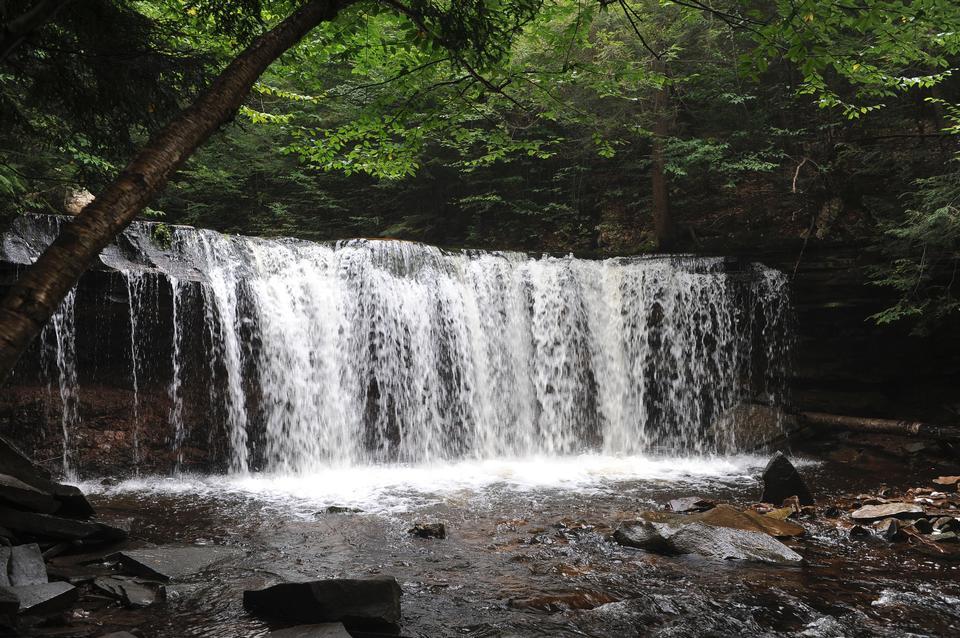 Cascate di Ricketts Glen State Park