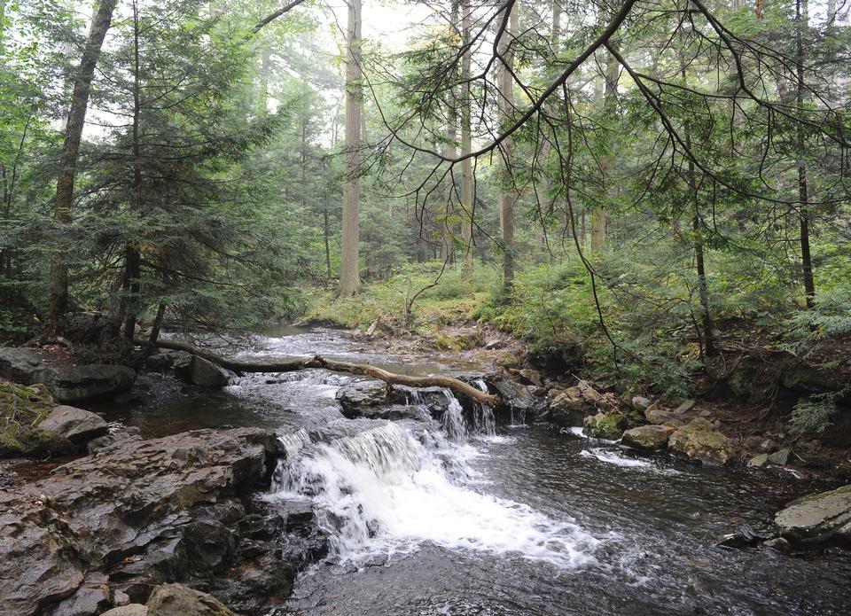 里基茨峡谷国家公园