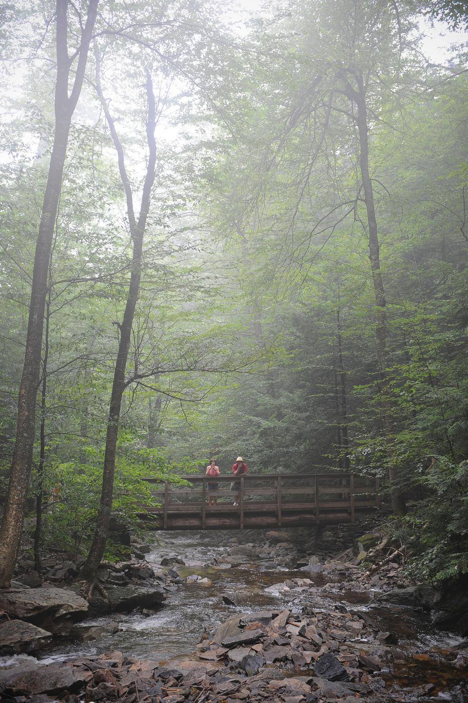 Рикеттс Glen State Park, - Бентон, Пенсильвания