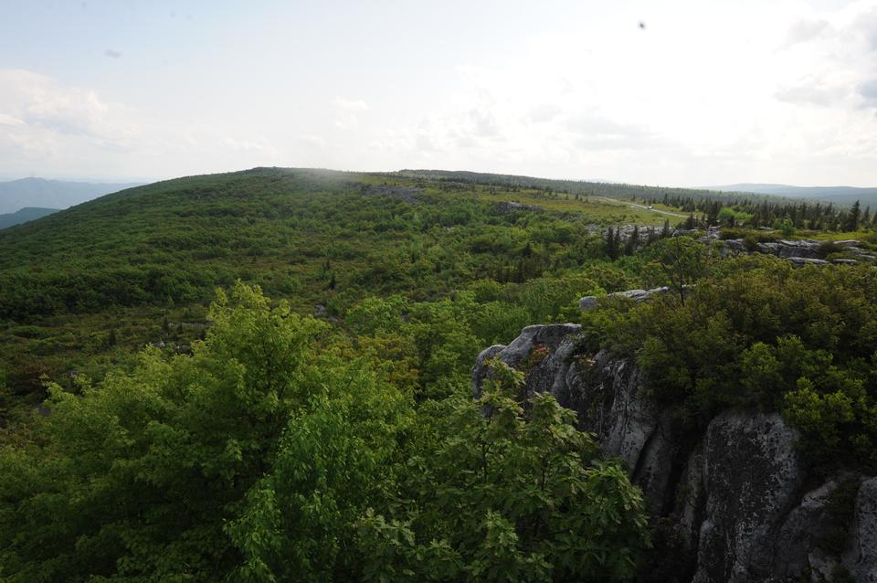 Dolly Sods and Bear Rocks, WV