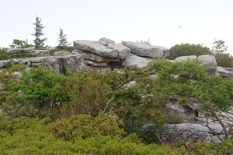 Bear Rocks : Climbing, Hiking