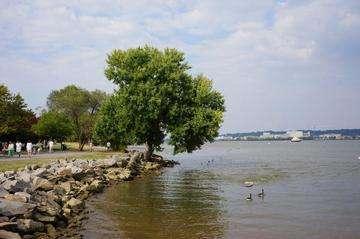 Download grátis imagem de alta resolução - Waterfront Park - Old Town Alexandria