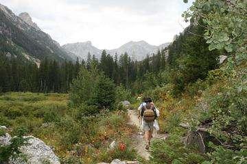 Descarga gratis la imagen de alta resolución - Grand Teton y Mt. Owen de Taggart Lake Trail