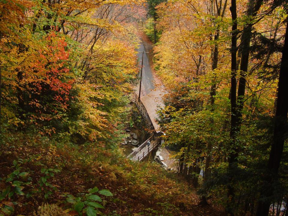 ニューハンプシャー州のホワイト山脈のハイキングと自然トレイル