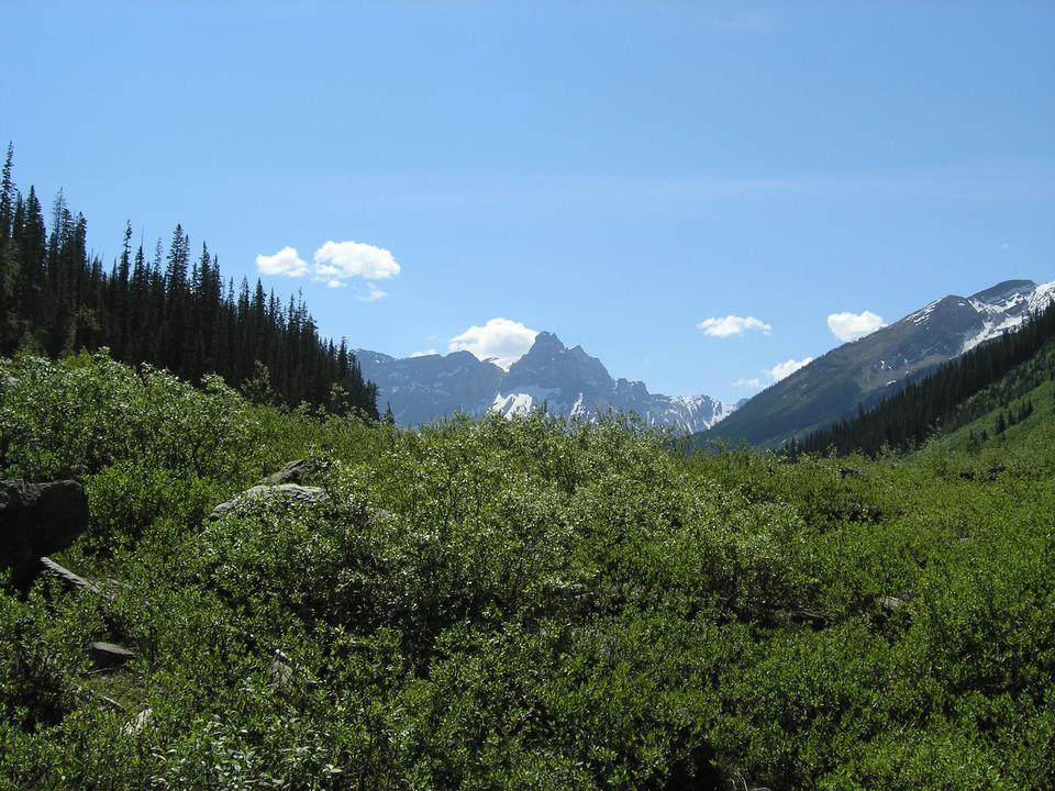カナダのロッキー山脈のヨーホー国立公園
