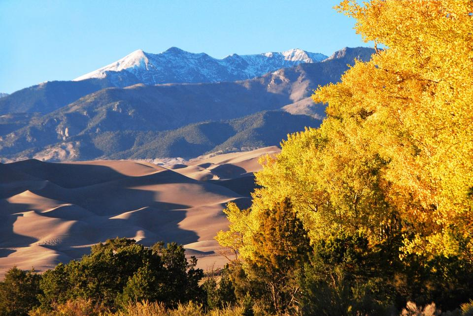 Gold Aspens, Dunes, and Cleveland Peak