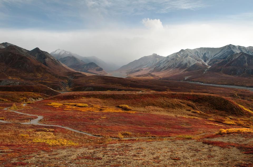 Thorofare, Otoño - Parque Nacional Denali