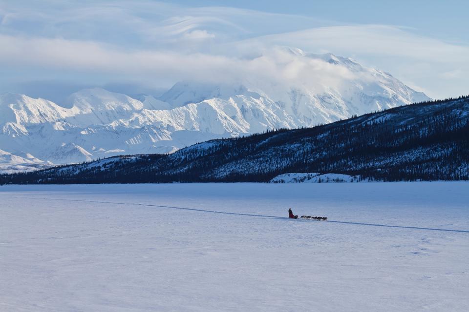Wonder Lake with Musher Landscape