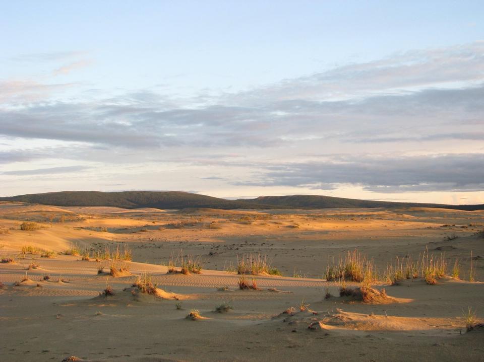 the Great Kobuk Sand Dunes