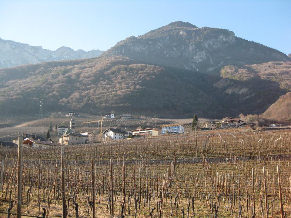 South Tyrol, Wine road near Tramin
