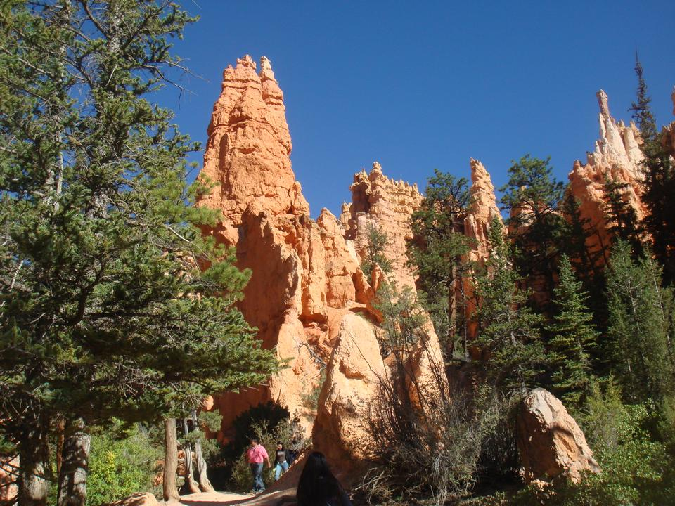 Hoodos of Queens Stone Garden, Bryce Canyon National Park, Utah