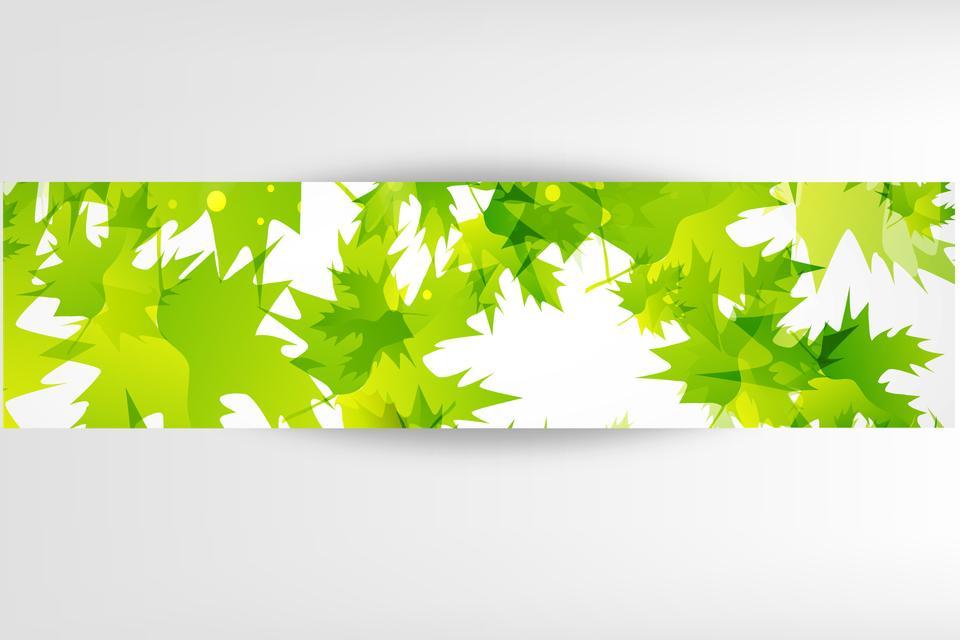 баннеры со свежими зелеными листьями
