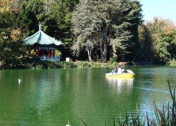 Descarga gratis la imagen de alta resolución - Vista del lago Stow en San Francisco Golden Gate Park