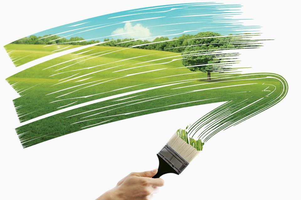 画绿色的田野