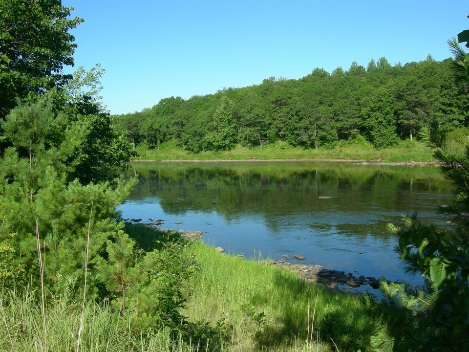 岩石和樹林線附近史蒂文斯溪河岸邊