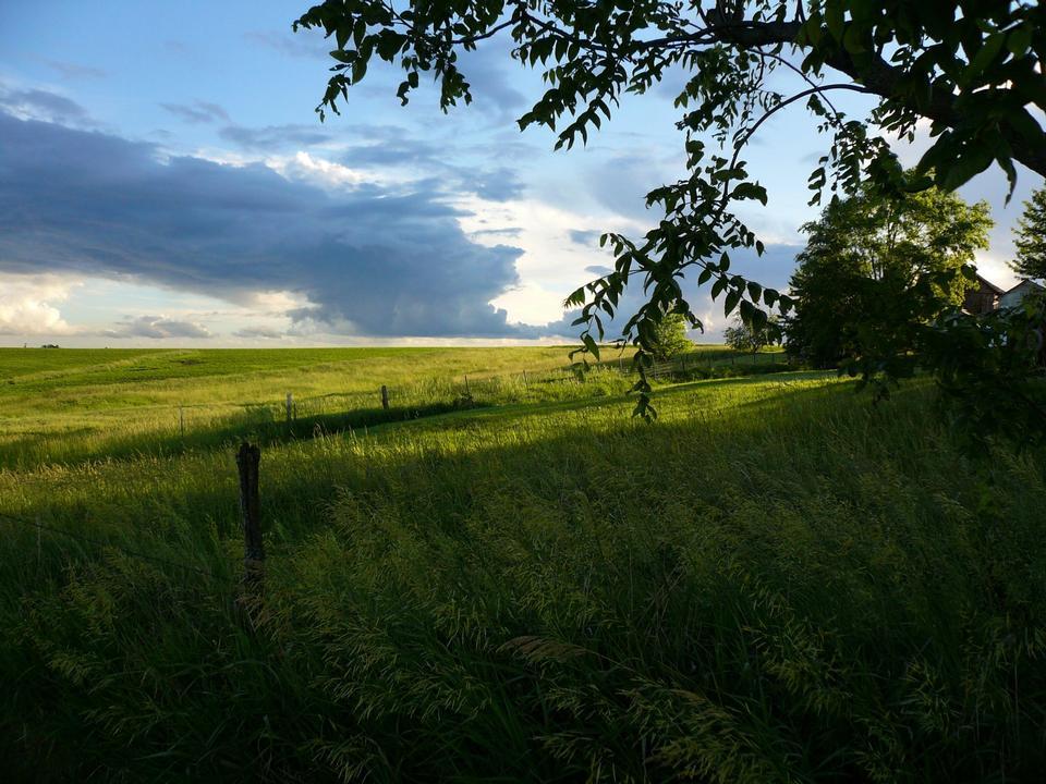 Tallgrass Prairie and Storm Clouds