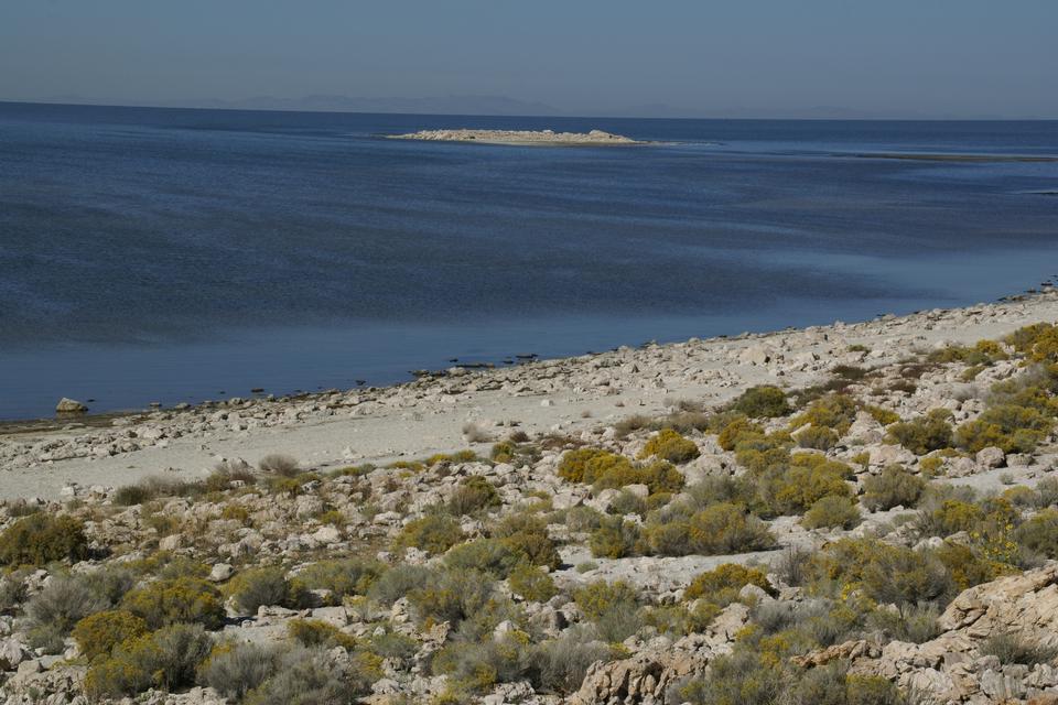 羚羊岛,大盐湖,犹他